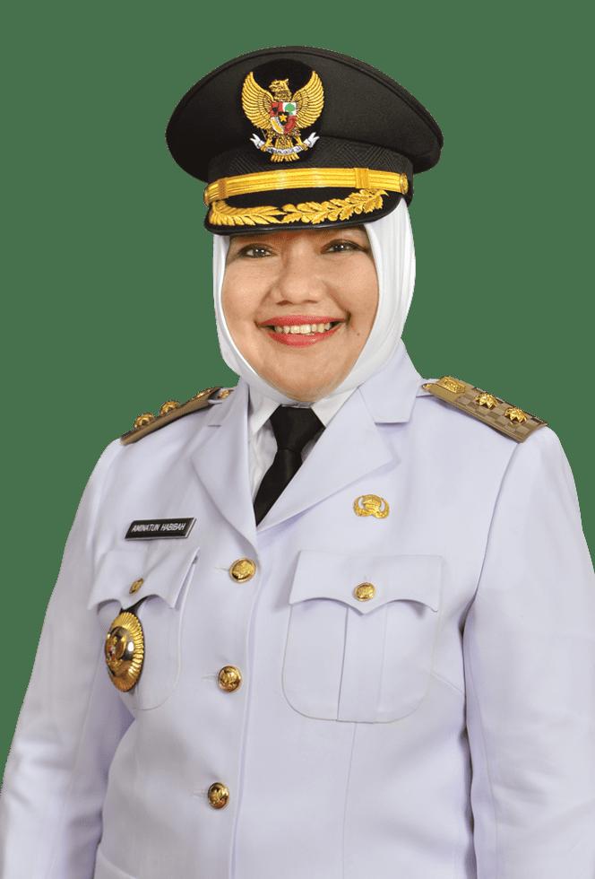 Mengenal Sosok Wakil Bupati Perempuan Pertama Gresik Hj Aminatun Habibah